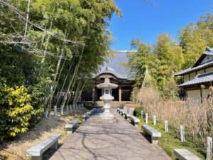 参道脇の竹林