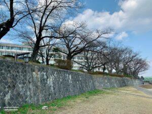 阿武隈川護岸