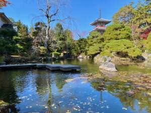 池泉回遊式庭園と三重塔