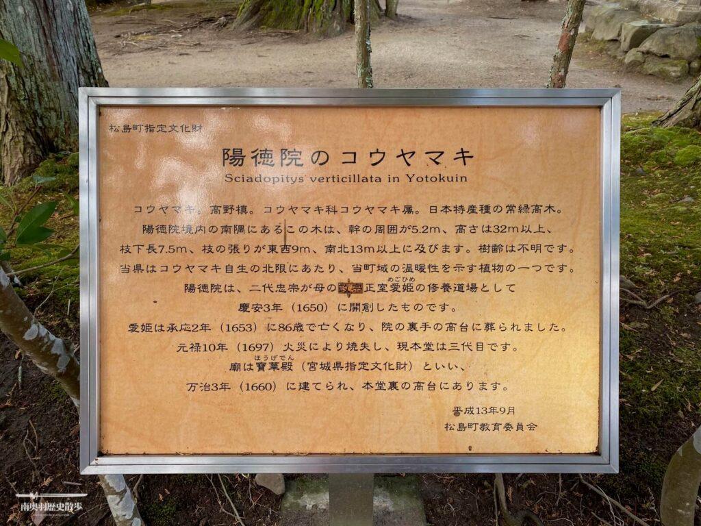 萬歳峰 陽徳院