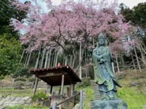 焼香堂と聖観世音菩薩