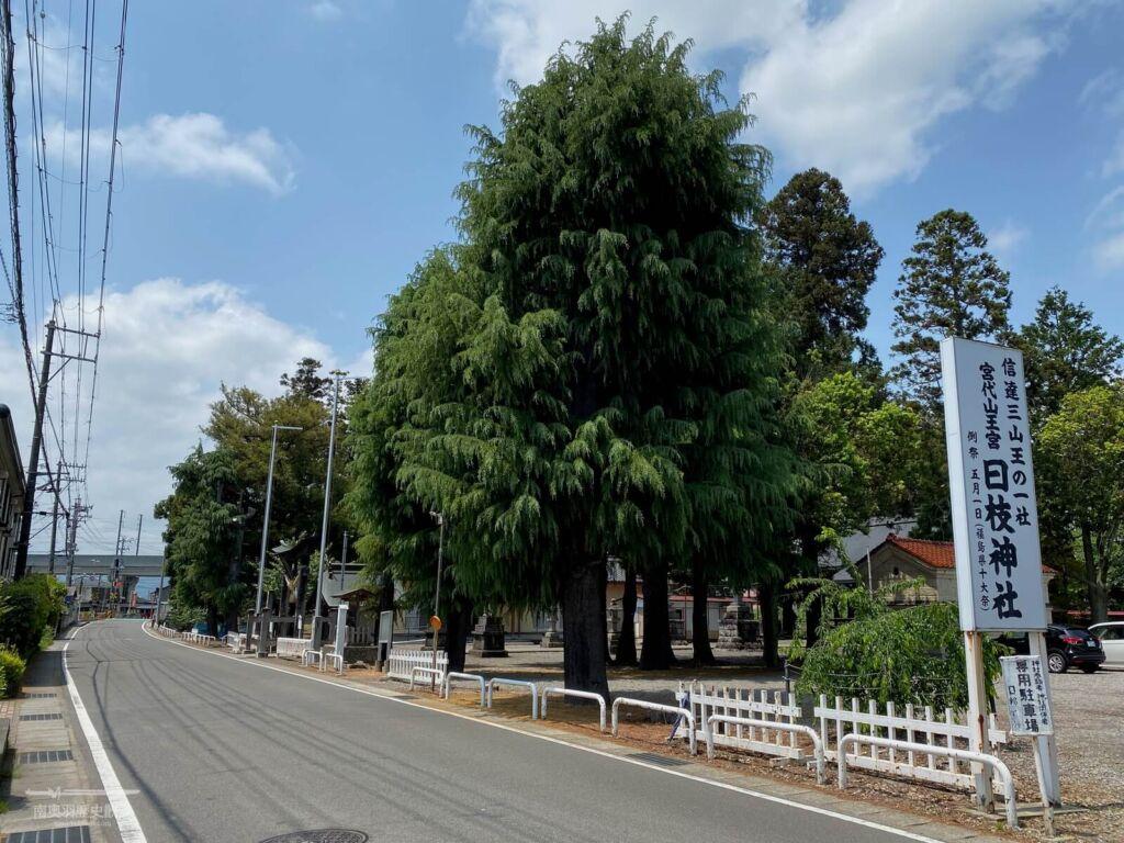 日枝神社 遠景