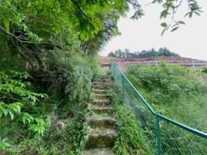 愛宕神社 石段