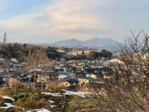 新館(山岡志摩陣屋)から望む白石城