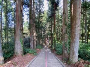 館跡を通る参道