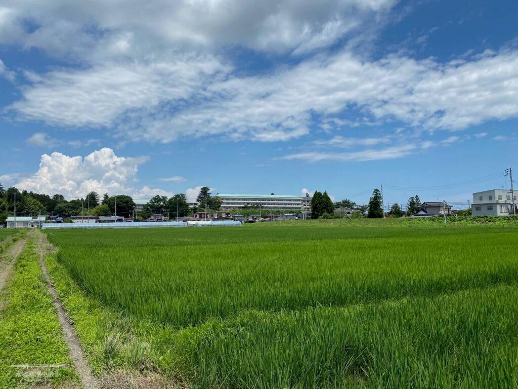 角田城跡 遠景