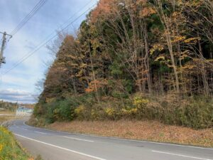 県道沿い 上田子屋方向
