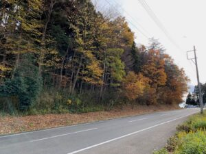 県道沿い 舘前方向