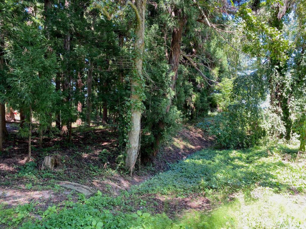 主郭と神社間の堀跡