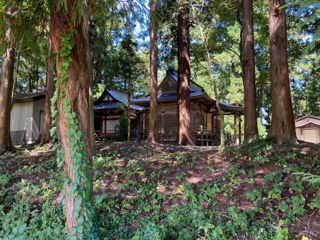 土塁跡と新山神社