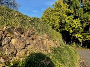 南館跡の石積